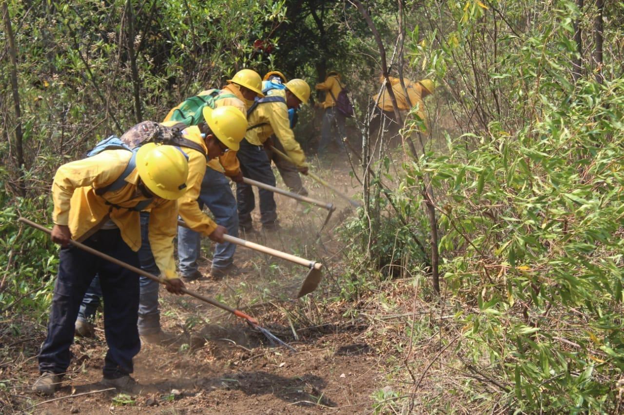 Queda controlado al cien por ciento el incendio en Tepoztlán